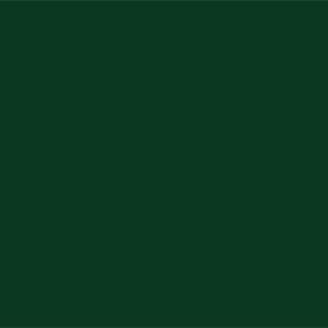 палитра RAL 6005 зеленый мох